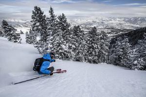 Male Skier In Utah by Liam Doran