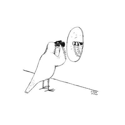 Bird looks at itself in the mirror with binoculars. - New Yorker Cartoon by Liana Finck