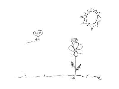 Captionless - New Yorker Cartoon by Liana Finck