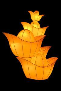 Chinese Gold Ingot Lantern by Liang Zhang