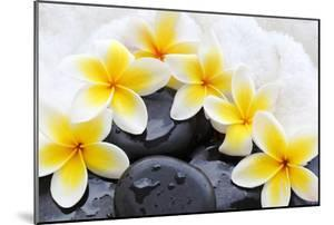 Spa Still Life with Frangipani Flowers,White Towel and Zen Stone by Liang Zhang