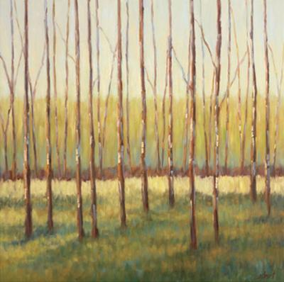 Grove of Trees by Libby Smart