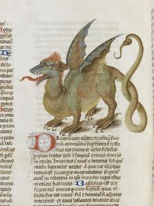Liber Floridus by Lambert of Saint-Omer: Dragon Major