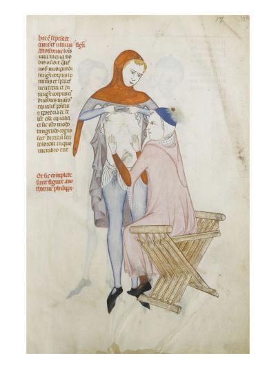 Liber notabilium Philippi septimi francorum regis, a libris Galieni extractus--Giclee Print