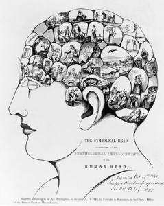 19th-century Phrenology by Library of Congress