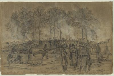 Union Soldiers Bury their Comrades and Burn their Horses after the Battle of Fair Oaks