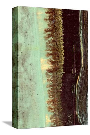 Lichen II-J^ McKenzie-Stretched Canvas Print