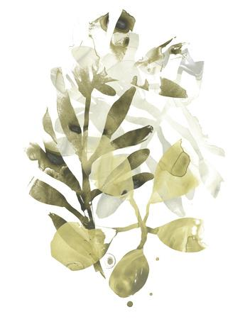 https://imgc.artprintimages.com/img/print/lichen-leaves-ii_u-l-q1c4lnj0.jpg?p=0