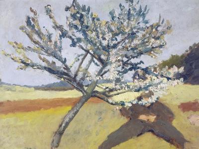 Liegender Mann Unter Bluehendem Baum, 1903-Paula Modersohn-Becker-Giclee Print