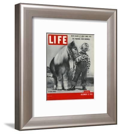 LIFE 30 inch Horse 1952--Framed Art Print