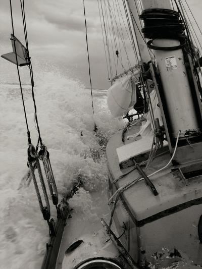 Life at Sea I-Brian Kidd-Photographic Print