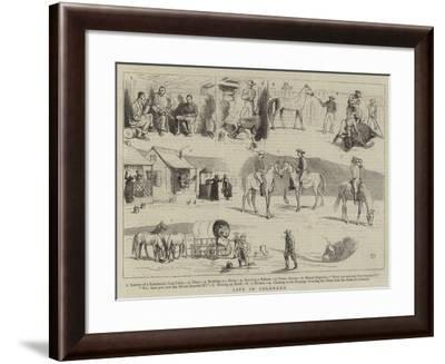 Life in Colorado-Alfred Chantrey Corbould-Framed Giclee Print