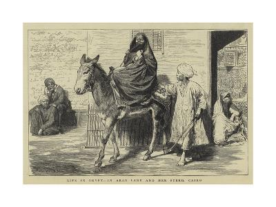 Life in Egypt, an Arab Lady and Her Steed, Cairo-Godefroy Durand-Giclee Print