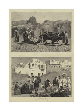Life in Egypt--Giclee Print
