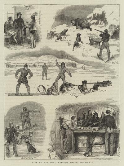Life in Manitoba, British North America, I-William Ralston-Giclee Print