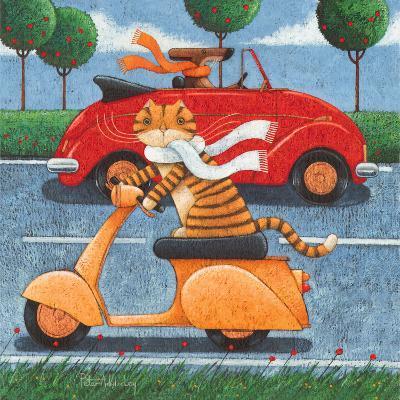 Life in the Fast Lane-Peter Adderley-Art Print