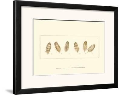 Life of a Songbird IV-Nancy Shumaker Pallan-Framed Art Print