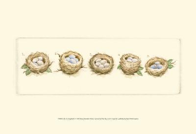 Life of a Songbird V-Nancy Shumaker Pallan-Art Print