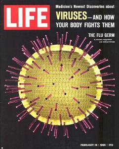 LIFE Viruses-The Flu Germ 1966