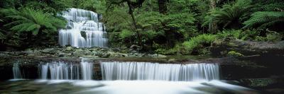 Liffey Falls, Tasmania, Australia--Photographic Print