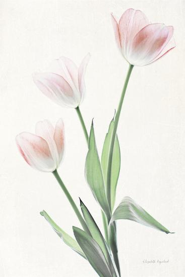 Light and Bright Floral I-Elizabeth Urquhart-Photo