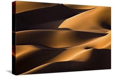 Light And Shadow-Mohammadreza Momeni-Stretched Canvas Print