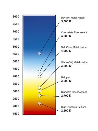 Light Bulb Colour Temperature Spectrum-Henning Dalhoff-Photographic Print