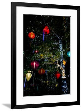 Light decorations. Tet Festival, New Year celebration, Vietnam.-Tom Norring-Framed Photographic Print