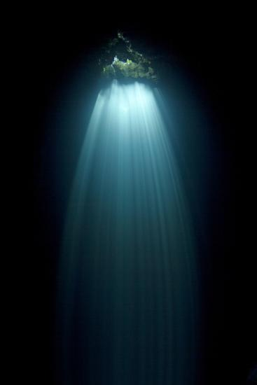 Light Entering Cenote Siete Bocas, Near Puerto Morelos, Riviera Maya, Yucatan Peninsula, Mexico-Claudio Contreras-Photographic Print