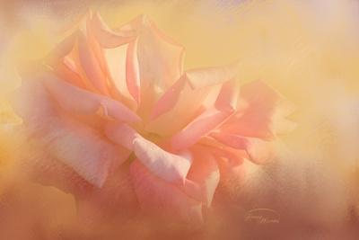 https://imgc.artprintimages.com/img/print/light-is-life_u-l-q1bx9f40.jpg?p=0