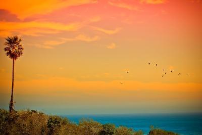 Light of Sun Setting on Malibu Beach-Albert Valles-Photographic Print
