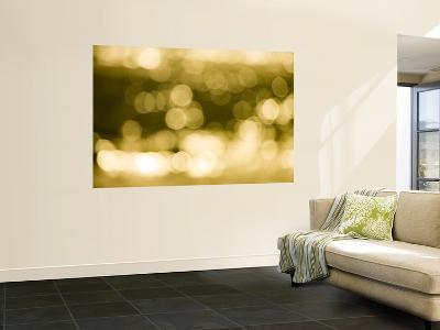 Light on the Water-Greg Elms-Wall Mural