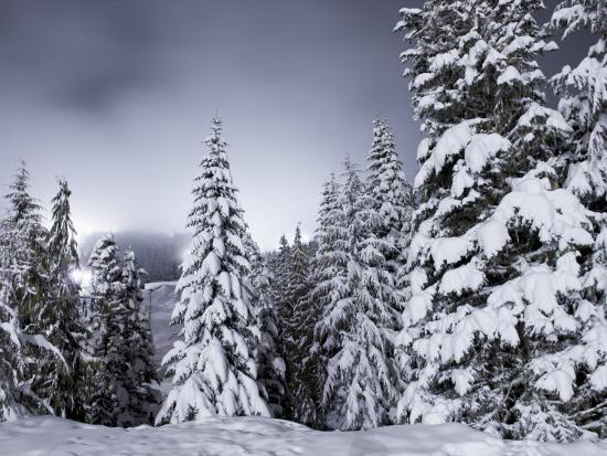 Light Pollution from a Night Ski Area Fills the Sky on Mt. Hood-Jim Richardson-Photographic Print