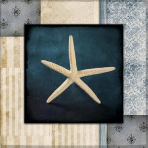 Blue Sea Starfish by LightBoxJournal