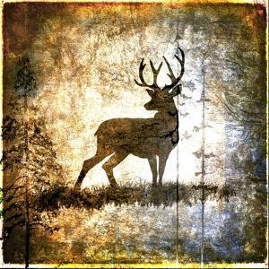 High Country Deer by LightBoxJournal