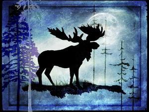 Midnight Moose by LightBoxJournal