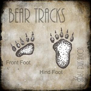 Moose Lodge 2 - Bear Tracks 2 by LightBoxJournal