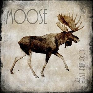 Moose Lodge 2 by LightBoxJournal