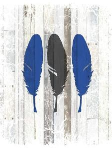The Blue Moose - Feathers by LightBoxJournal