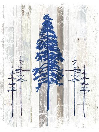 The Blue Moose - Lodge Pole Pine