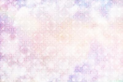 White Spring Blossoms Pattern 05 by LightBoxJournal