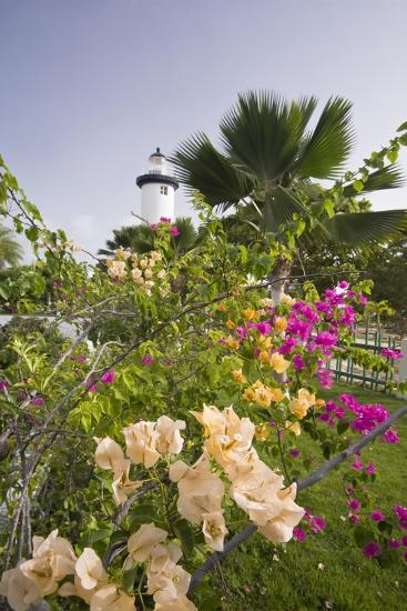 Lighthouse and Bougainvillea-George Oze-Photographic Print