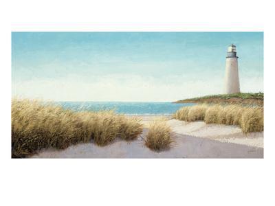 https://imgc.artprintimages.com/img/print/lighthouse-by-the-sea_u-l-pxzs6o0.jpg?p=0