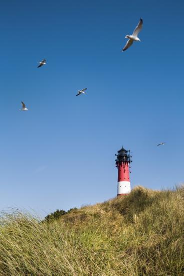 Lighthouse, Hörnum, Sylt Island, Northern Frisia, Schleswig-Holstein, Germany-Sabine Lubenow-Photographic Print