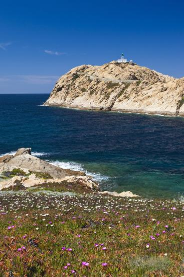 Lighthouse, Ile De La Pietra Islant, Ile Rousse, Corsica, France-Walter Bibikow-Photographic Print