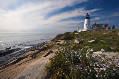 Lighthouse with Wildflowers Pemaquid Point Maine-George Oze-Photographic Print