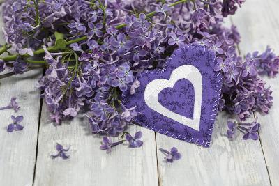 Lilacs, Flowers, Purple, Violet, Heart-Andrea Haase-Photographic Print