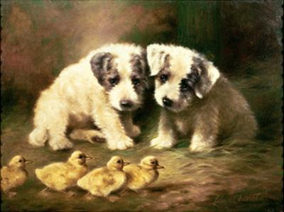 Sealyham Puppies and Ducklings by Lilian Cheviot