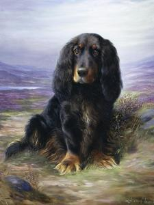 Spaniel in the Highlands by Lilian Cheviot