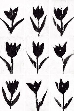 Tulip Noir Composite